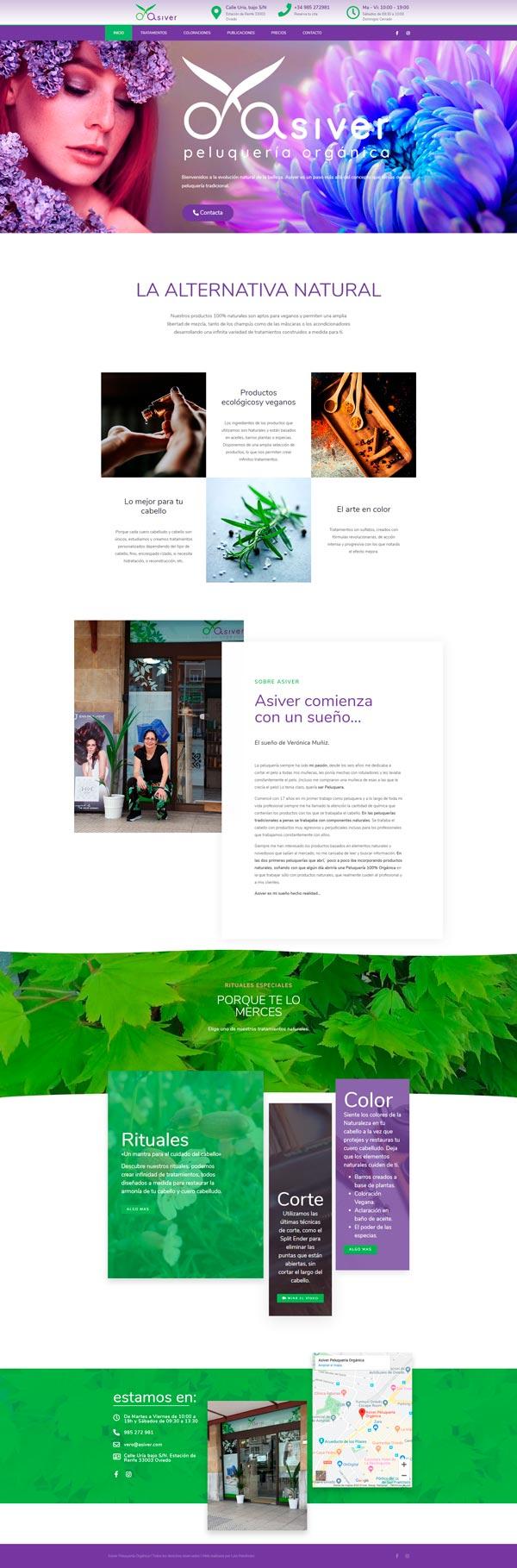 diseño-página-web-para-peluqueria-Asiver